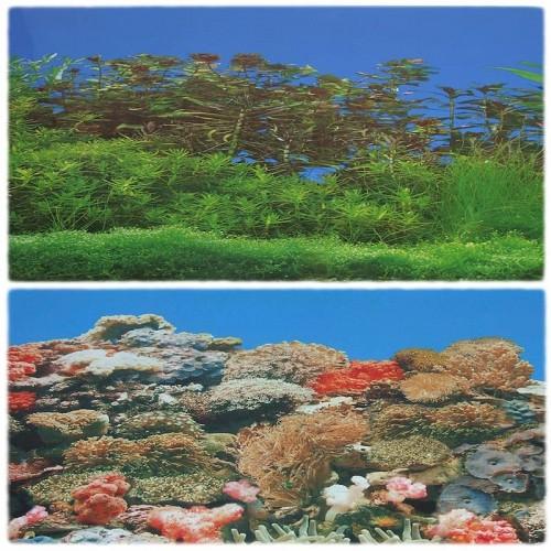 Decor acvariu 2D 2 fete 40 cm/15 m
